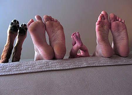 stopala refleksoterapija obitelj